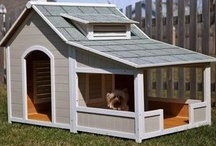 Pets / Adorable Animals | Pet Houses | Cats + Dogs