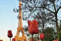 Paris / Inspirations from the City of Light