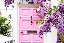 I Have This Thing With Doors / Pastel pink doors galore, from houses to restaurants; Edinburgh to New York