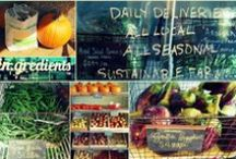 Food Day Blog-Along / Bloggers unite for Food Day, October 24! / by Mary Helen Leonard