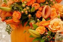 Seasonal Decorating / by Vicki Rathman Lehr