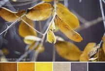 COLOUR PALETTES / by Pearline
