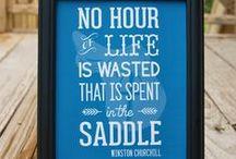 Equestrian Media & Design