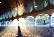 Riding Arenas / Equestrian Arenas