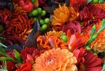 Flowers / Here are some ideas for wedding bouquets, centerpieces, flowers by season.