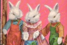 R.is.for.rabbit.