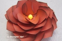 Craft - Bows & Flowers / Flowers:  also see my board on Crafts - Paper / by Connie Kahl