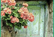 Crush for old doors