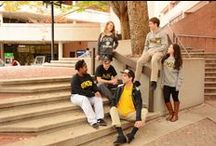 Fall Fashion / UMBC stduents around campus rockin' their UMBC merch!