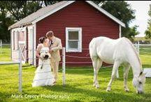 Some favorite wedding photos / A few of my favorite wedding photos (photos by Mark Creery Photography, Colorado wedding photographer)