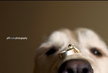 First comes love, then comes marriage... / Wedding things :) / by Ashley Ackert