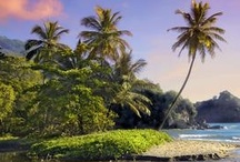 Trinidad and Tobago and Islands of The Caribbean  / Could not have wished for better days of growing up in Trinidad and Tobago and  Barbados   The Caribbean. What wonderful memories   / by Susan Edghill