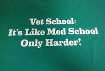 Vet Med / Reasons to be a vet, and helpful vet infographics / by Ashley Ackert