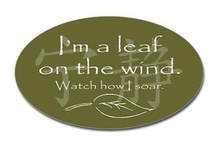 I'm a leaf on the wind... / Firefly and Serenity / by Ashley Ackert