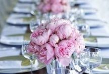 Wedding and Reception Ideas