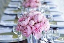 Wedding and Reception Ideas