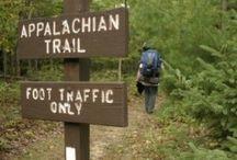 Appalachian Trail / I yearn to walk the Appalachian Trail / by Darby Johnson