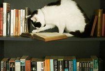 Bookish / by Caroline Green