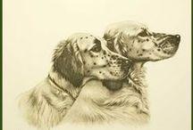 Art peinture chiens / Chiens (Aquarelles, dessins, pastels... )