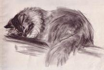 Peintre (Clare Turlay Newberry) / Chats (aquarelle, pastel ou encre)
