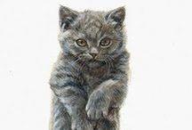 Peintre (Marjolein Kruijt) / Animalier