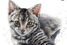 Peintre (Braden Duncan) / Portraits animaliers, Dr Who