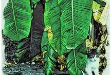 Peintre (Rebecca Stringer Korpita) / Chats, chiens, nature