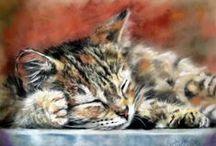 Peintre (Paul Knight) / Félins : chats émouvants et magnifiques Source : Blog de Paul Chevalier, admirateur de Paul Knight