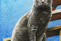 Peintre (Cara Bevan) / Chats
