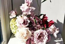 Flower Shop / Nature   Flowers    Design     Arrangements