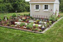 Home: Gardening / by Tiffany Pascua