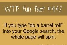 ~Fun Facts~
