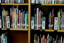 Library Organization & Management