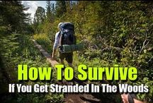 Survival and Homesteading / Tips on how to plan and what to do in emergency situations. Also DIY solutions for homesteading. / by Dani Eide