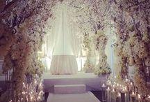 Wedding / by Andrea O