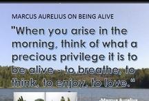 Marcus Aurelius says