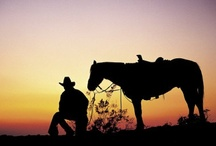 Rodeo and Cowboys / by Debi Shorkey