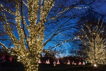 """Holidays in Pennsylvania / There is no mystery as to why the holiday season is often described as the most wonderful time of the year. Make this season even more extraordinary and enjoyable by checking out some """"must-see"""" holiday celebrations throughout Pennsylvania."""