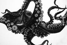 Octopodes / by Leah E Johnson