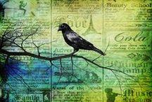 raven! / by Sharon Villagomez