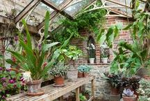 Sheds, Greenhouses & Cabins / stunning homes for your plants