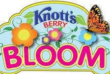 Knott's Berry Farm / Our favorite photos from the historic amusement park