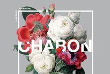 Nature & Design / flowers, nature found in (good) design