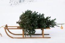 Holiday / Christmas / Mainly rustic holiday inspiration.