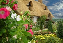 Cottages / by Janel