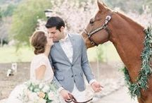 WEDDING + HORSES / As a horse owner and lover, I always love a good equestrian themed wedding! What's not to love!