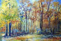 LandscapesEarth