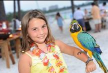 For the Kids / So much to do, so little time! Sandestin Golf and Beach Resort offers fun for the whole family and so many options for the kids! From Club KZ, putt putt and tennis camps to playgrounds and nature trails, Sandestin will keep the kids entertained and having fun!  / by Sandestin