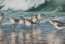 Seaside / by Nadine Whitmore