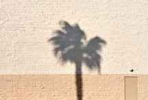 CALIFORNIA / Design driven, timeless quality   @SIMPLEWATCHCO #exploretime
